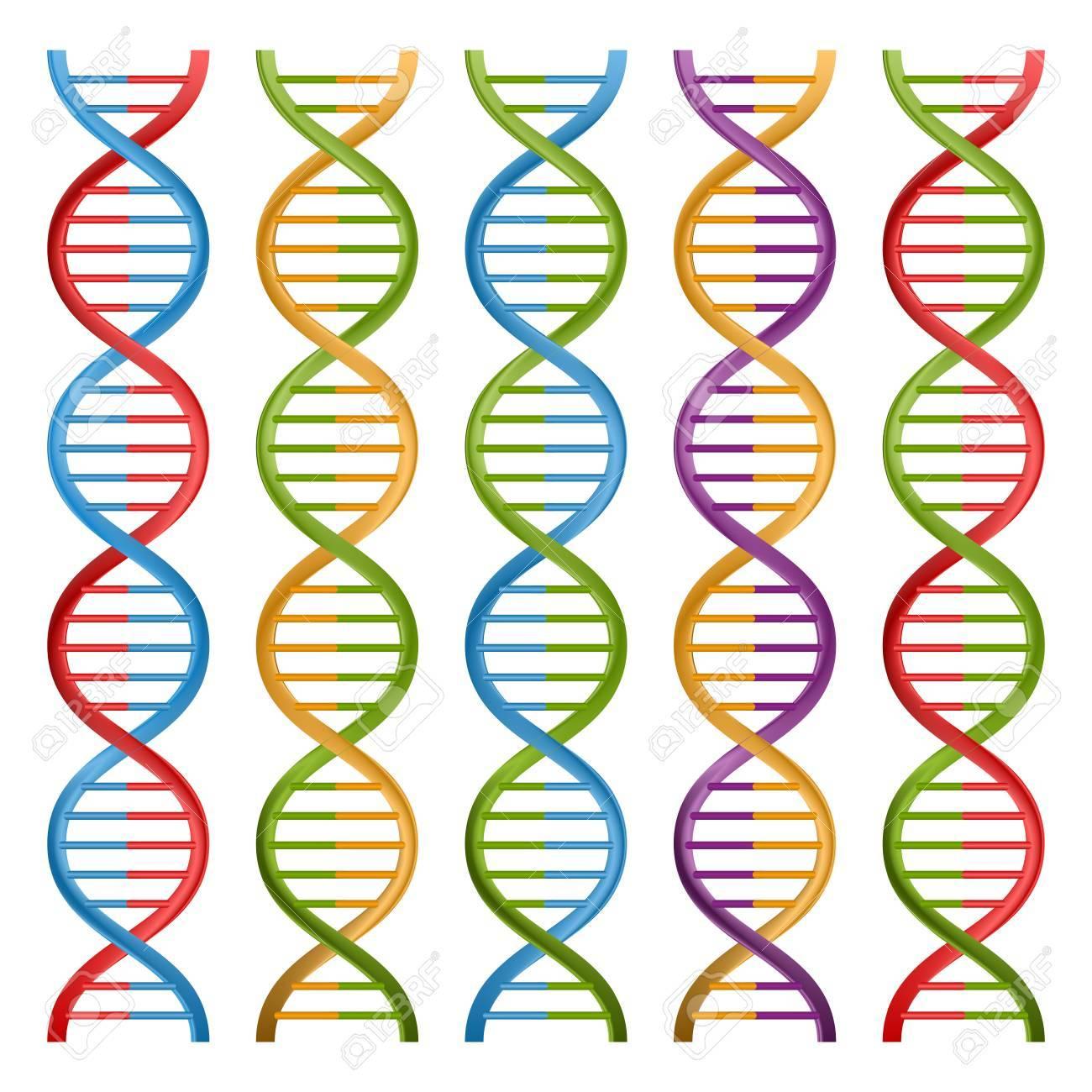 Set Of Dna Symbols For Science And Medicine Vector Design Royalty