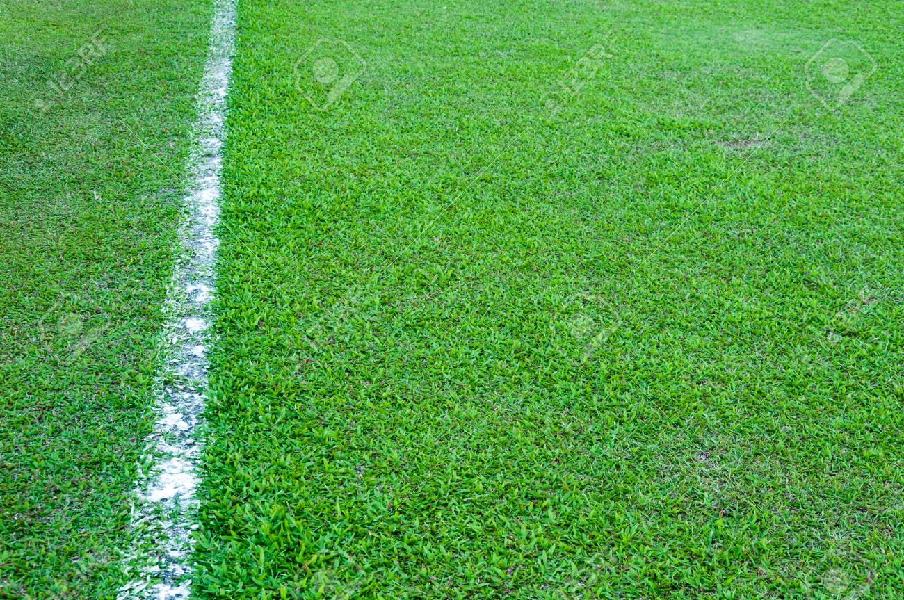 green grass football field grass texture seamless real green grass texture of soccer fieldsoccer field outdoorline white on grass texture of soccer fieldsoccer field outdoorline