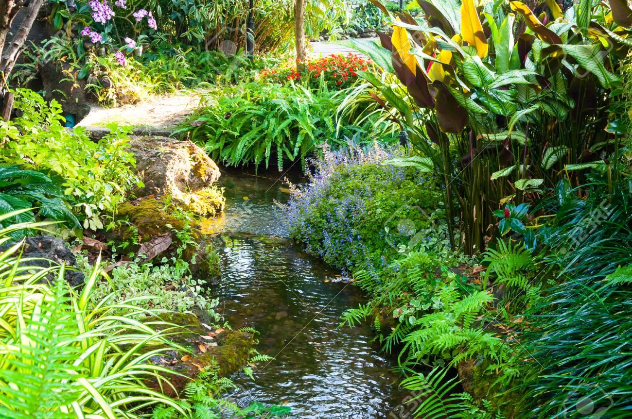 Schöne Landschaftsgestaltung Mit Schönen Pflanzen Und Blumen