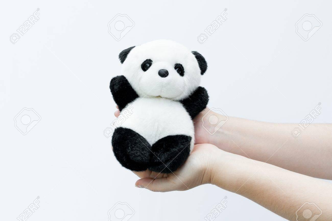 Hand Holding Panda Doll Black Rim Of Eyes Panda Toy On White Stock Photo Picture And Royalty Free Image Image 79214692