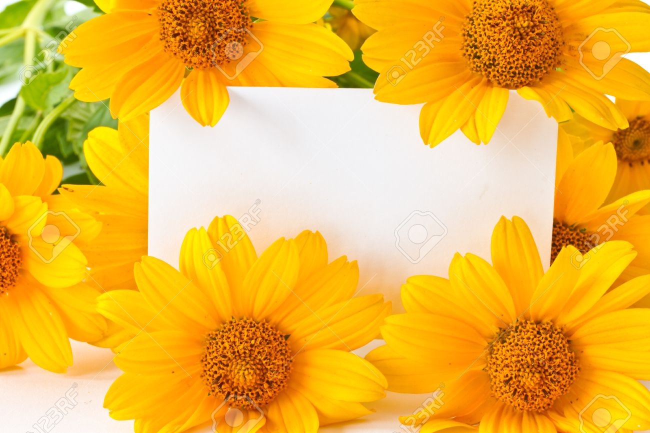 Card For Congratulations On A Background Of Yellow Flowers Stock