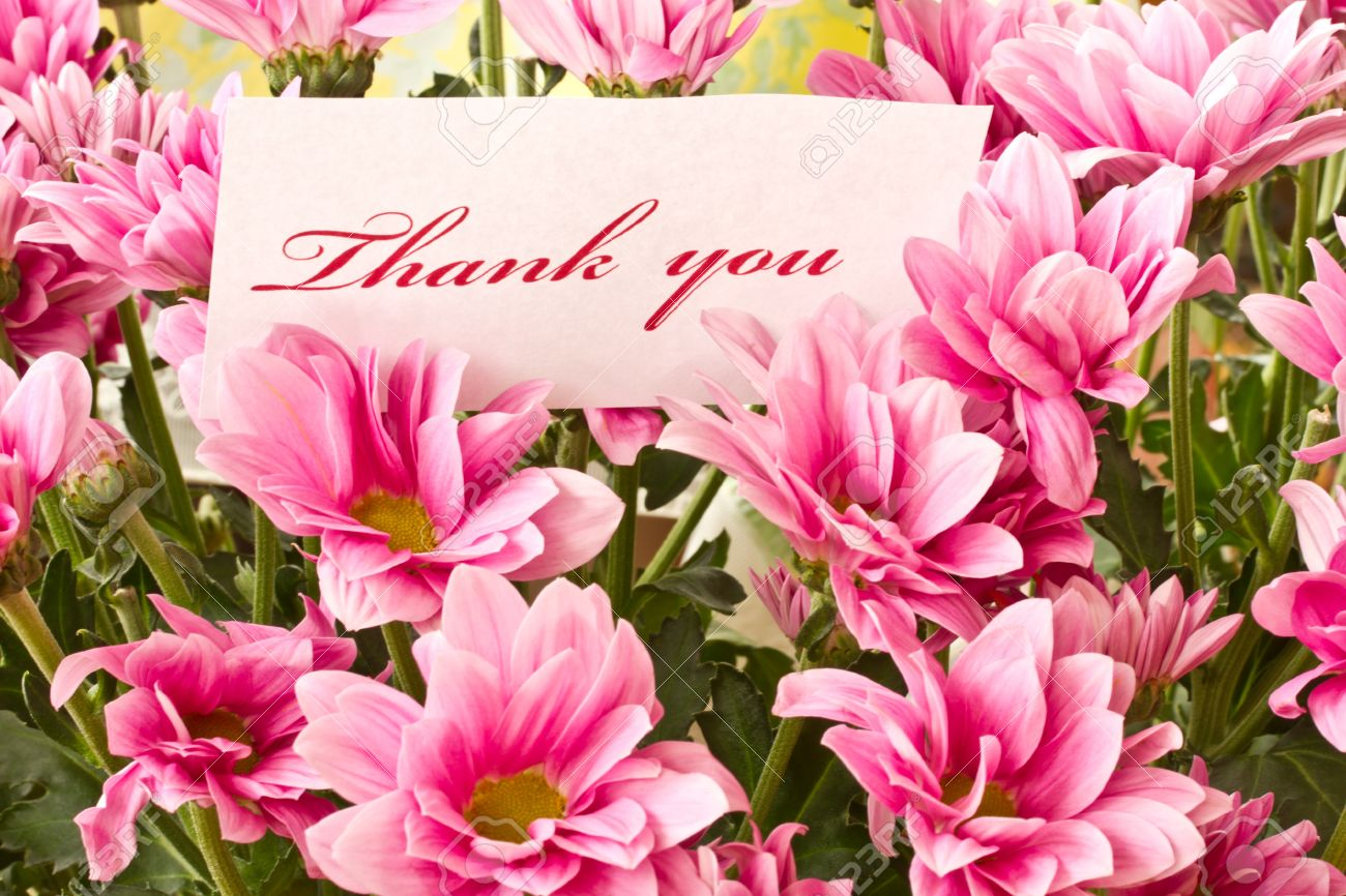 Say thank you on a background of beautiful flowers stock photo say thank you on a background of beautiful flowers izmirmasajfo
