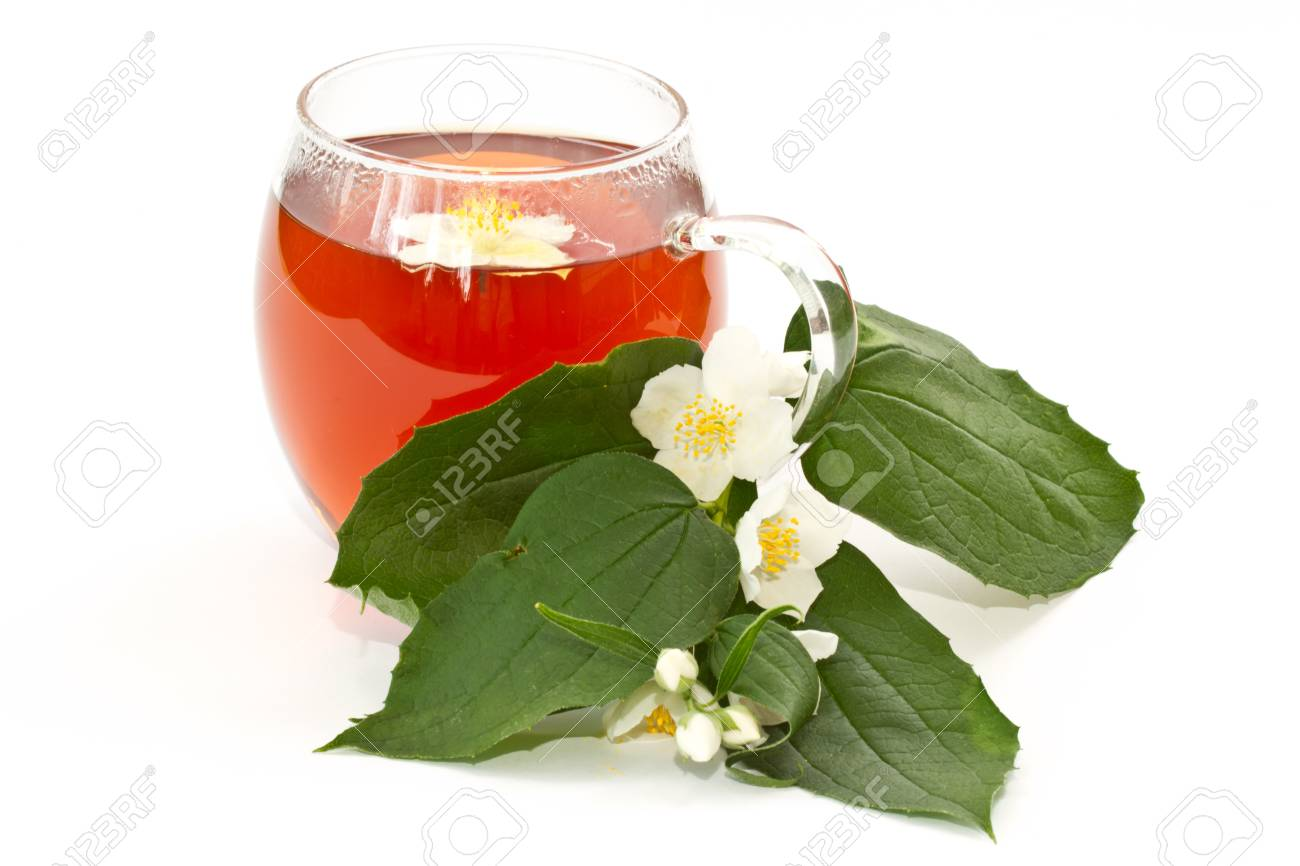 Jasmine Tea And Jasmine Flowers On A White Background Stock Photo