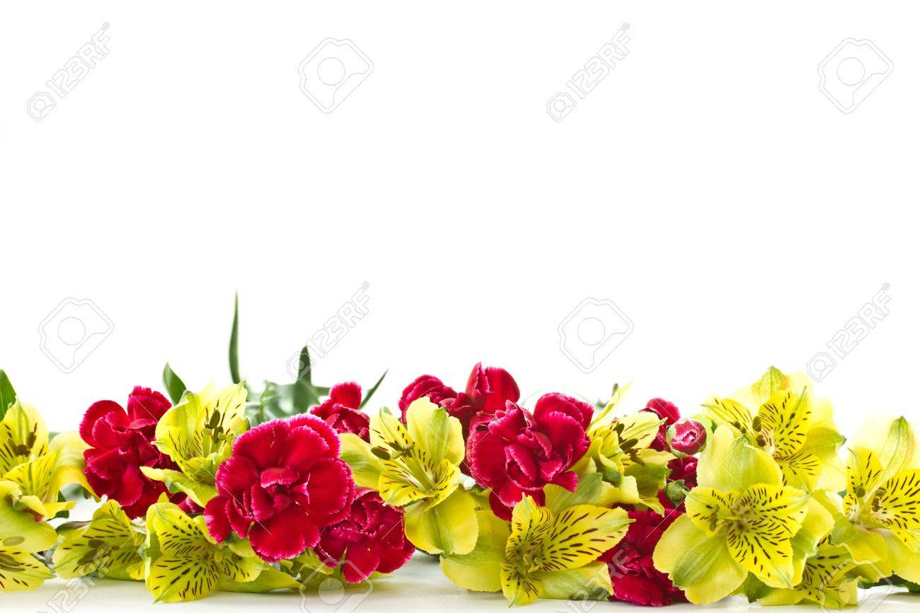 Alstroemeria and red carnations on a white background Stock Photo - 12973411