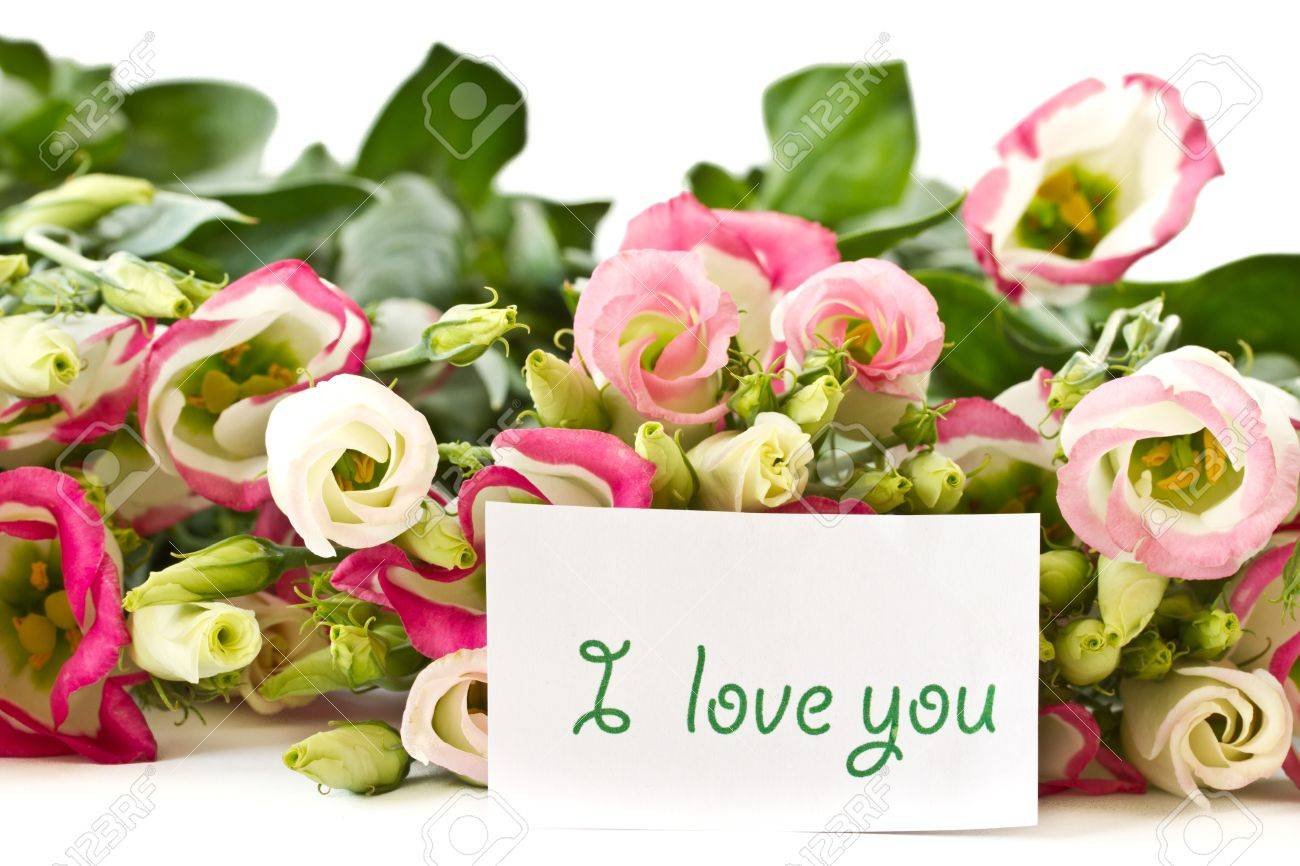 declaration of love, and lisianthus bouquet of flowers on a white background Stock Photo - 13075065