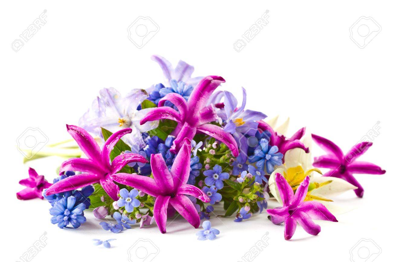 Beautiful Bouquet Of Spring Flowers On A White Background Stock ...