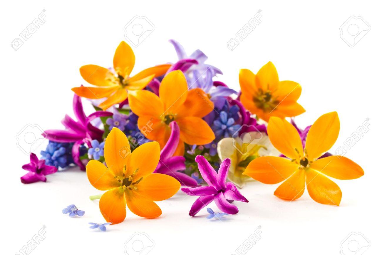 Souvent Beau Bouquet De Fleurs Printanières Sur Fond Blanc Banque D'Images  WA69