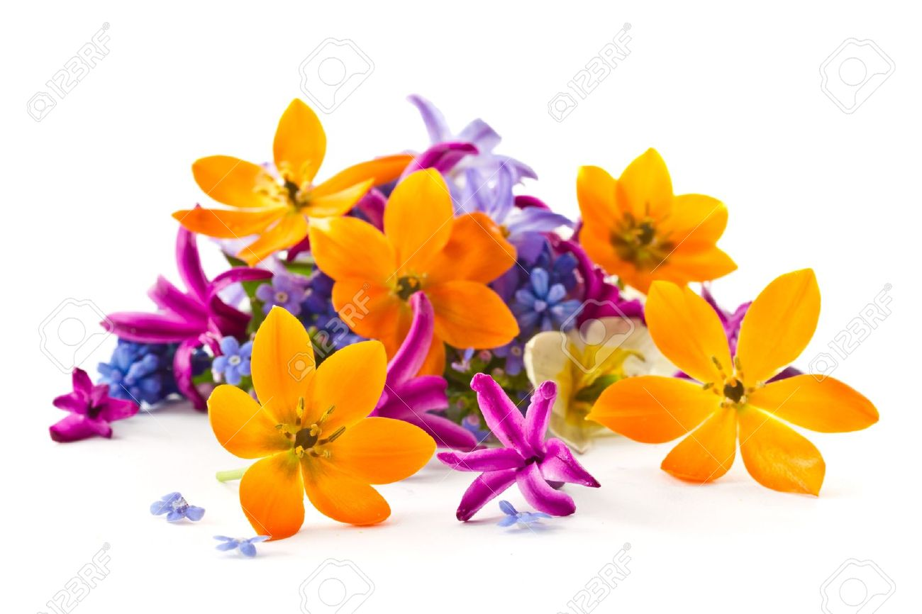 Beautiful Bouquet Of Spring Flowers On A White Background Stock
