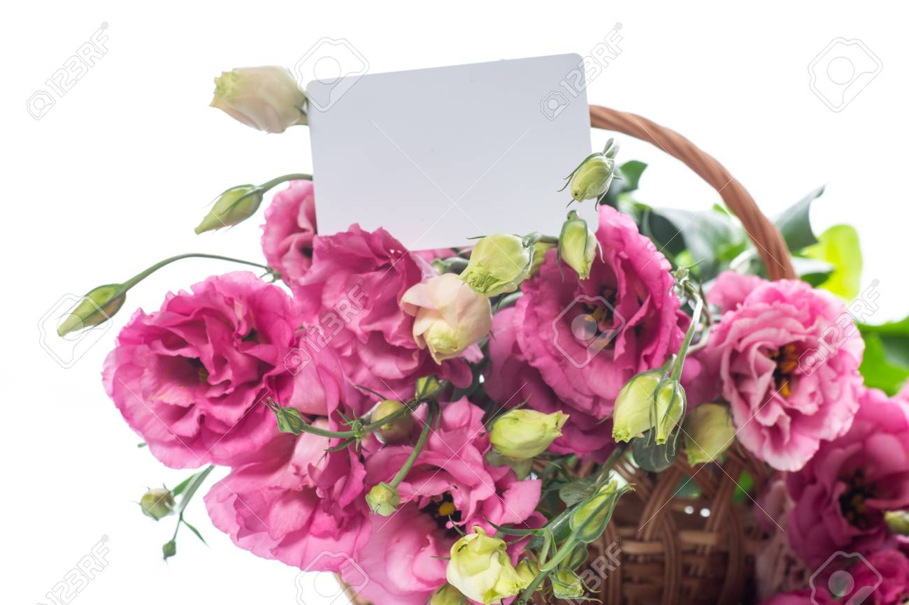 Beautiful bouquet of pink lisianthus flowers stock photo picture beautiful bouquet of pink lisianthus flowers stock photo 84576245 mightylinksfo