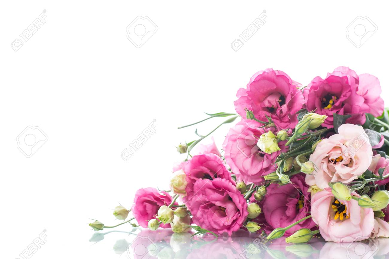 Beautiful bouquet of pink lisianthus flowers stock photo picture beautiful bouquet of pink lisianthus flowers stock photo 84576210 mightylinksfo
