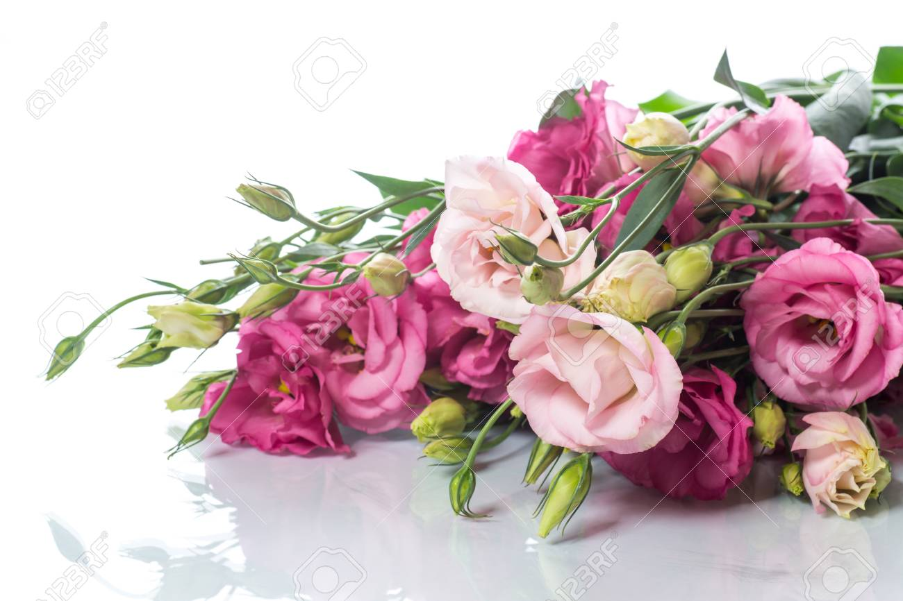 Beautiful bouquet of pink lisianthus flowers stock photo picture beautiful bouquet of pink lisianthus flowers stock photo 88294004 mightylinksfo