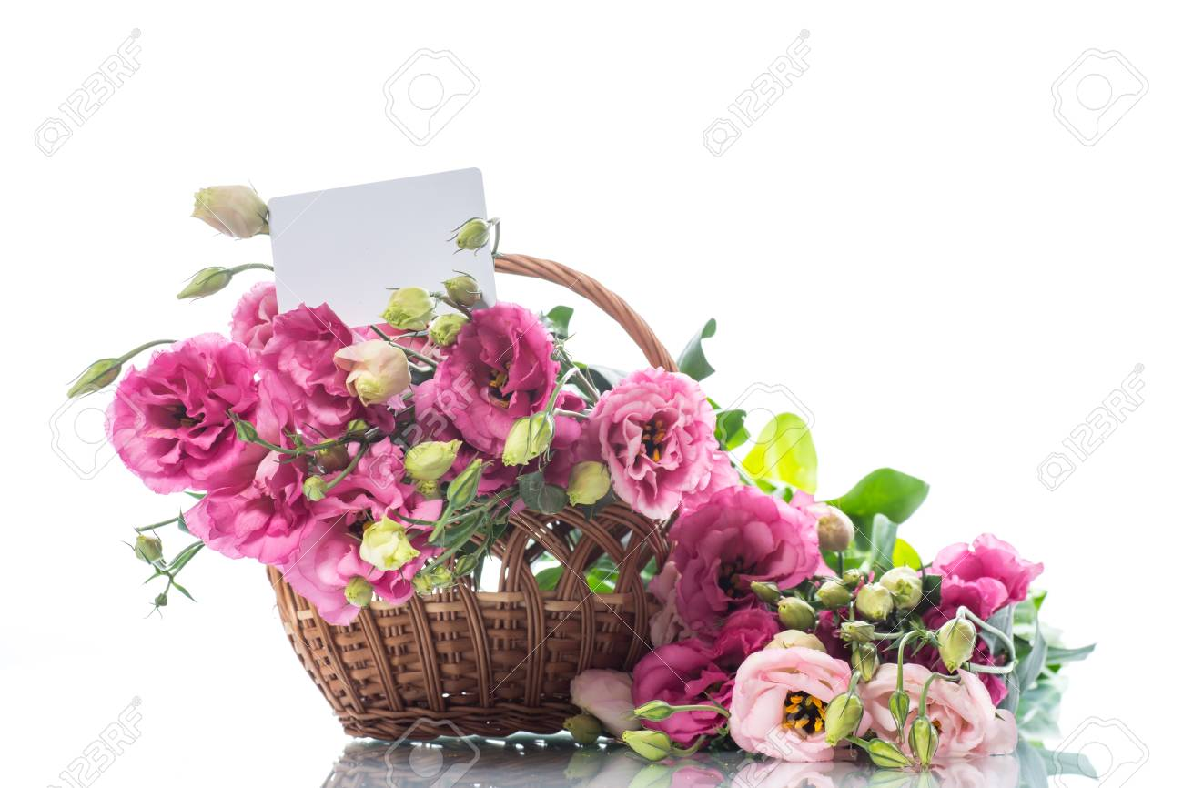 Beautiful bouquet of pink lisianthus flowers stock photo picture beautiful bouquet of pink lisianthus flowers stock photo 88294007 mightylinksfo
