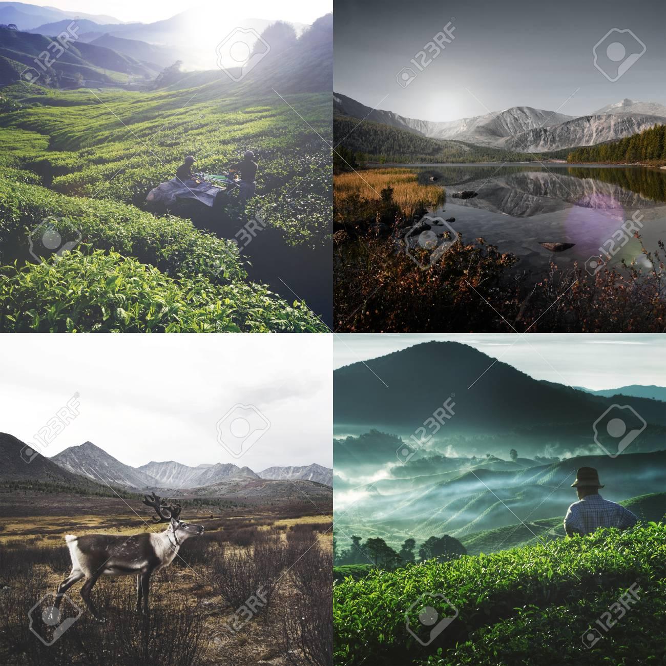 ecologie vacances et voyages