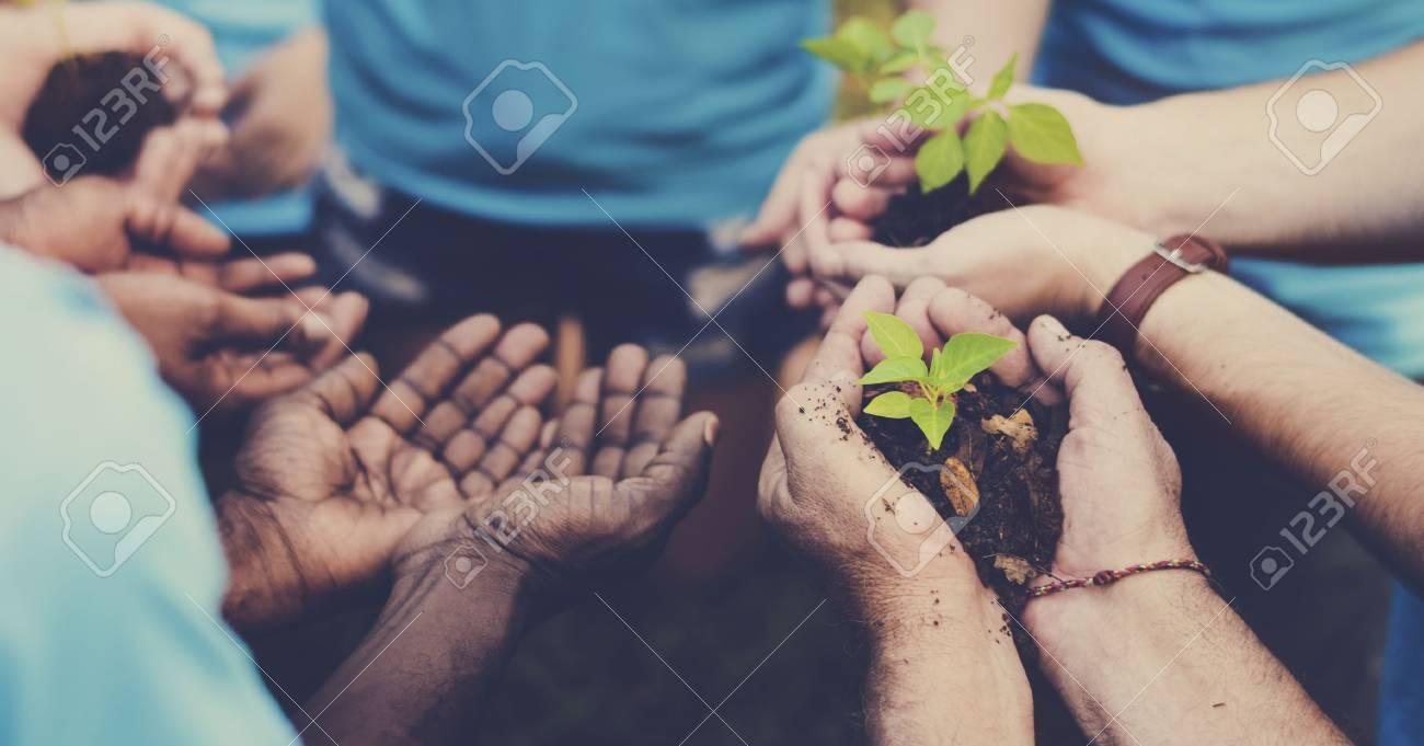 Groupe de volontaires avec pousses pour la croissance Banque d'images - 76142503