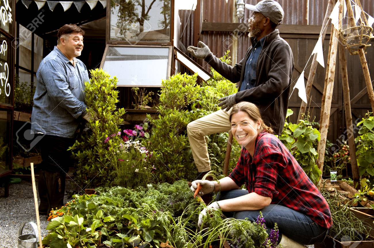 Group Of People Gardening Backyard Together Stock Photo, Picture And ...