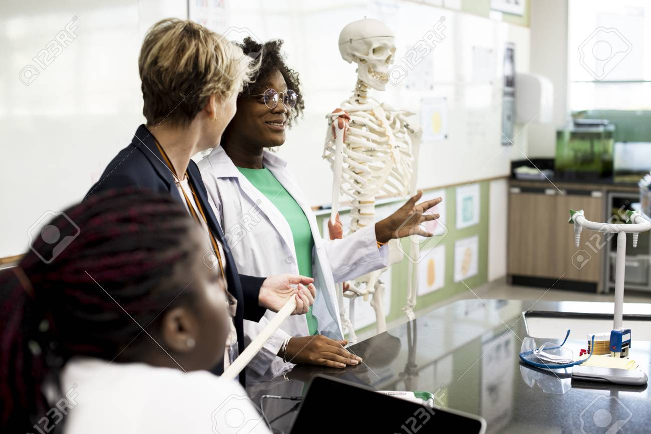 Biology Teacher Teaching Anatomy With Diverse High School Students ...
