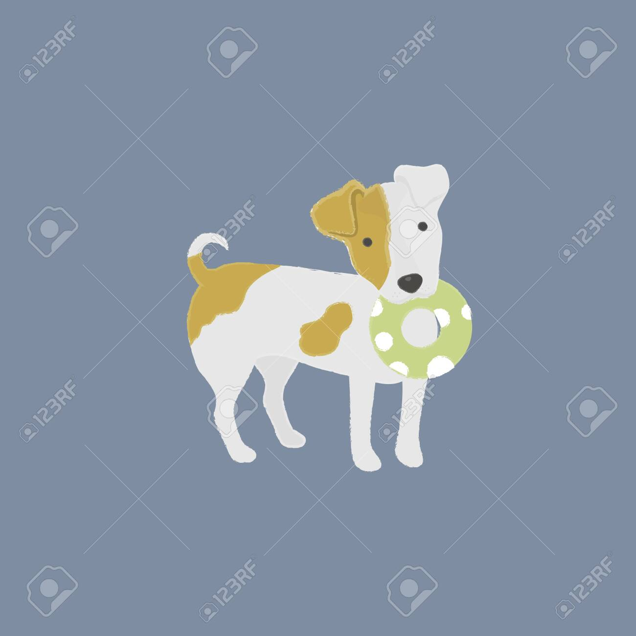 Dog with a pet toy - 115735094