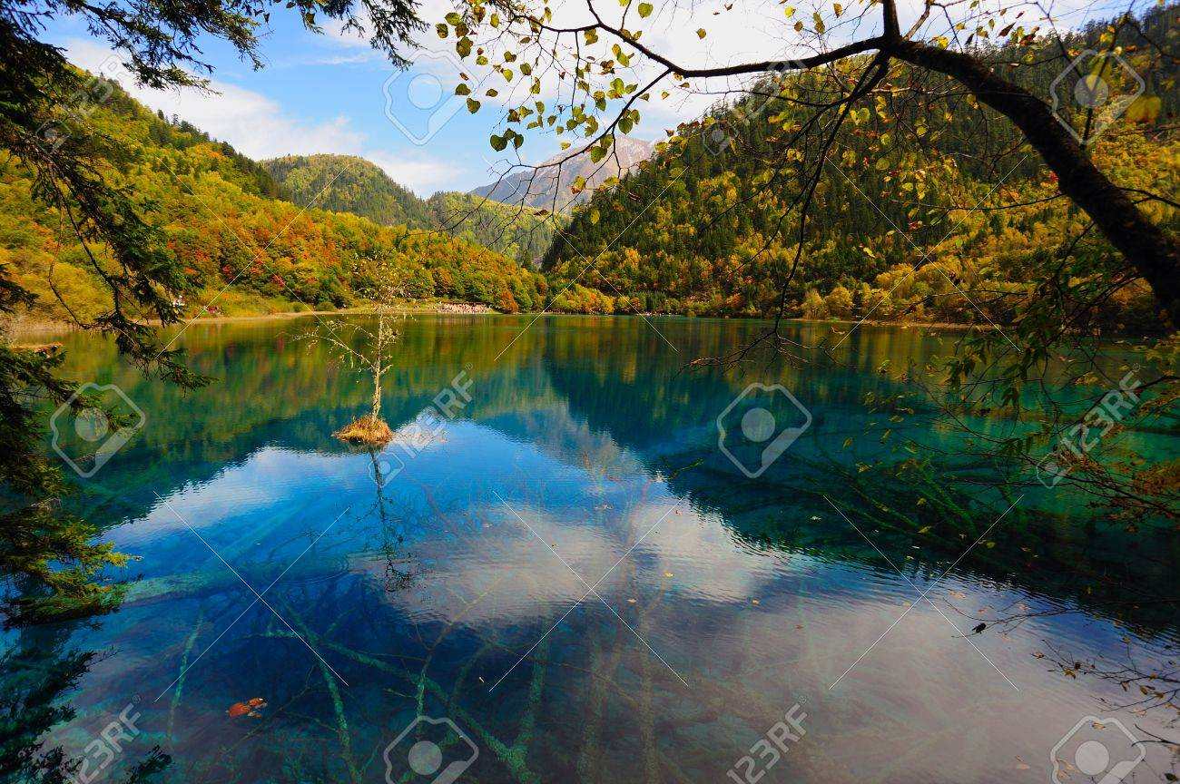 Forest and Lake in Jiuzhaigou, Sichuan province of China Stock Photo - 8297498