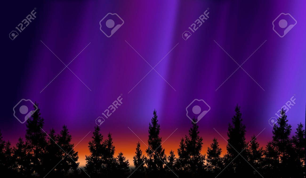 Northern lights Stock Photo - 10010008
