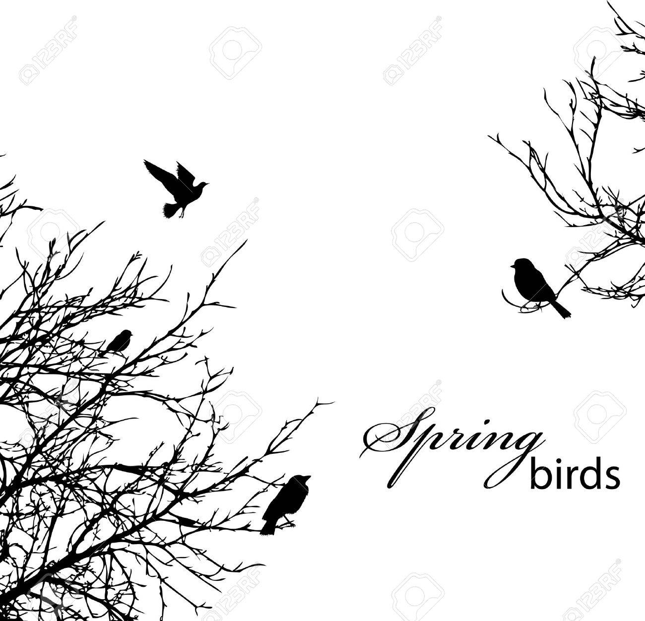 silhouette of trees and birds, copyspace - 9412169