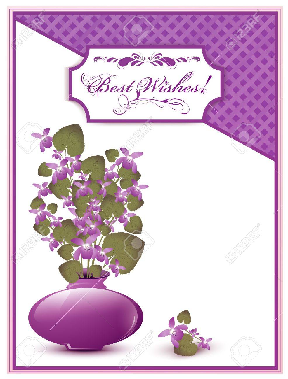 Best Wishes postcard with bunch of wild violet over white background Stock Vector - 12250532