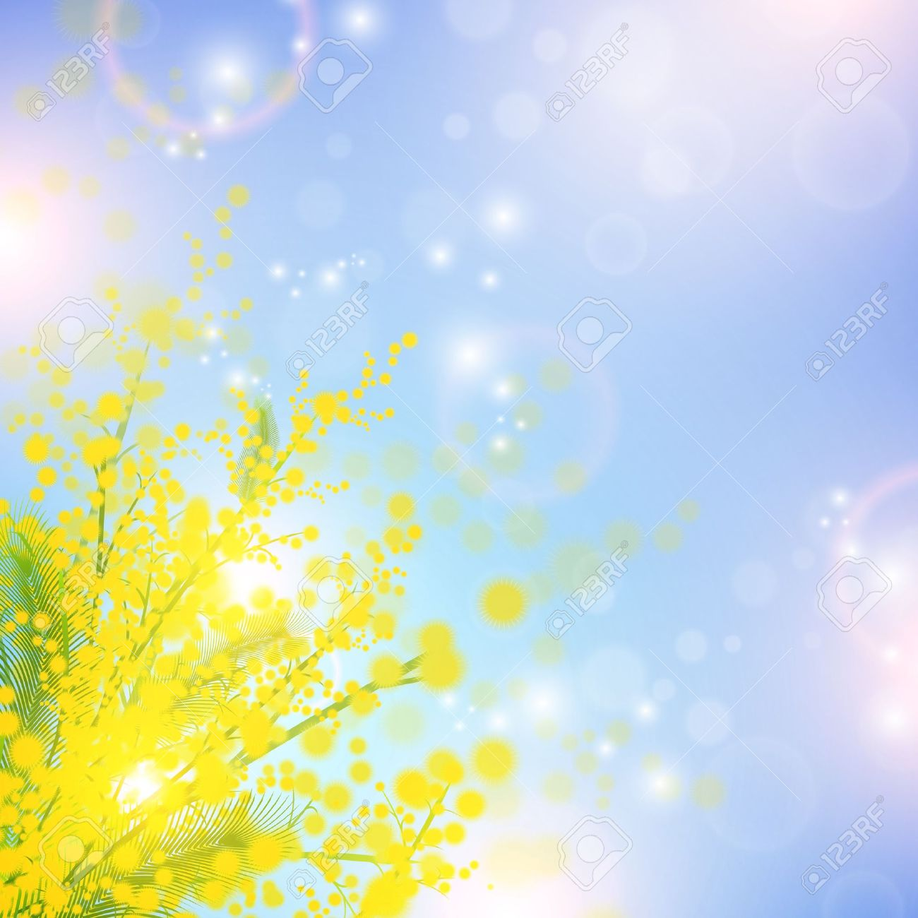 Mimosa flowers over blue sky and magic spring lights - 12250537