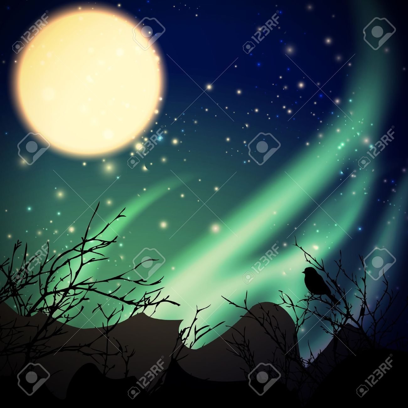 night with northern lights and moon - 13513977