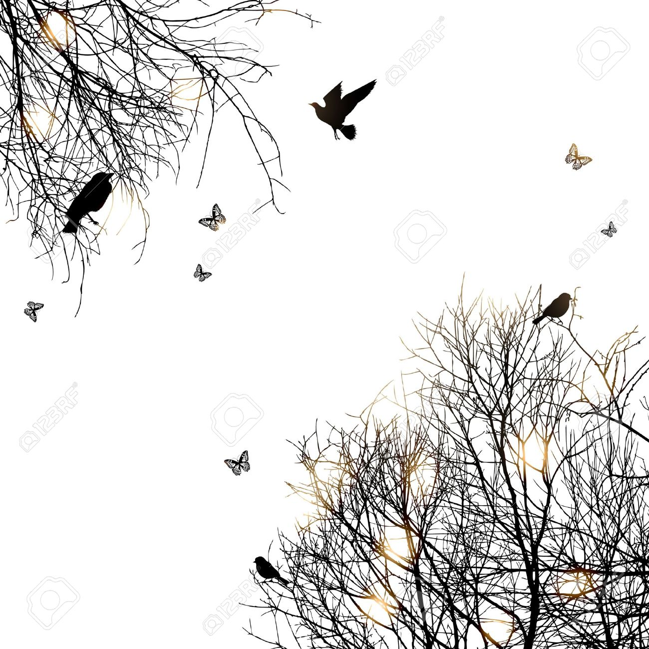 silhouette of trees and birds, copyspace - 14206754