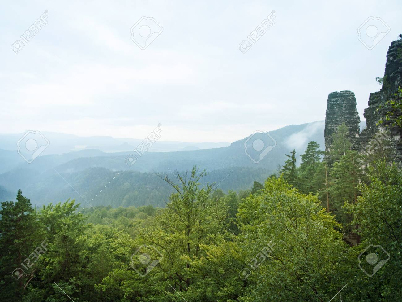 mountains of Czech Switzerland with green forests Stock Photo - 14805955