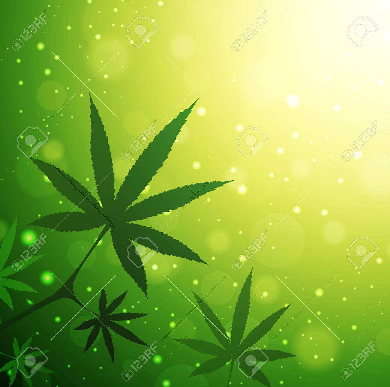 Cannabis Leaves Over Green Sunny Background, Copyspace - 19380460