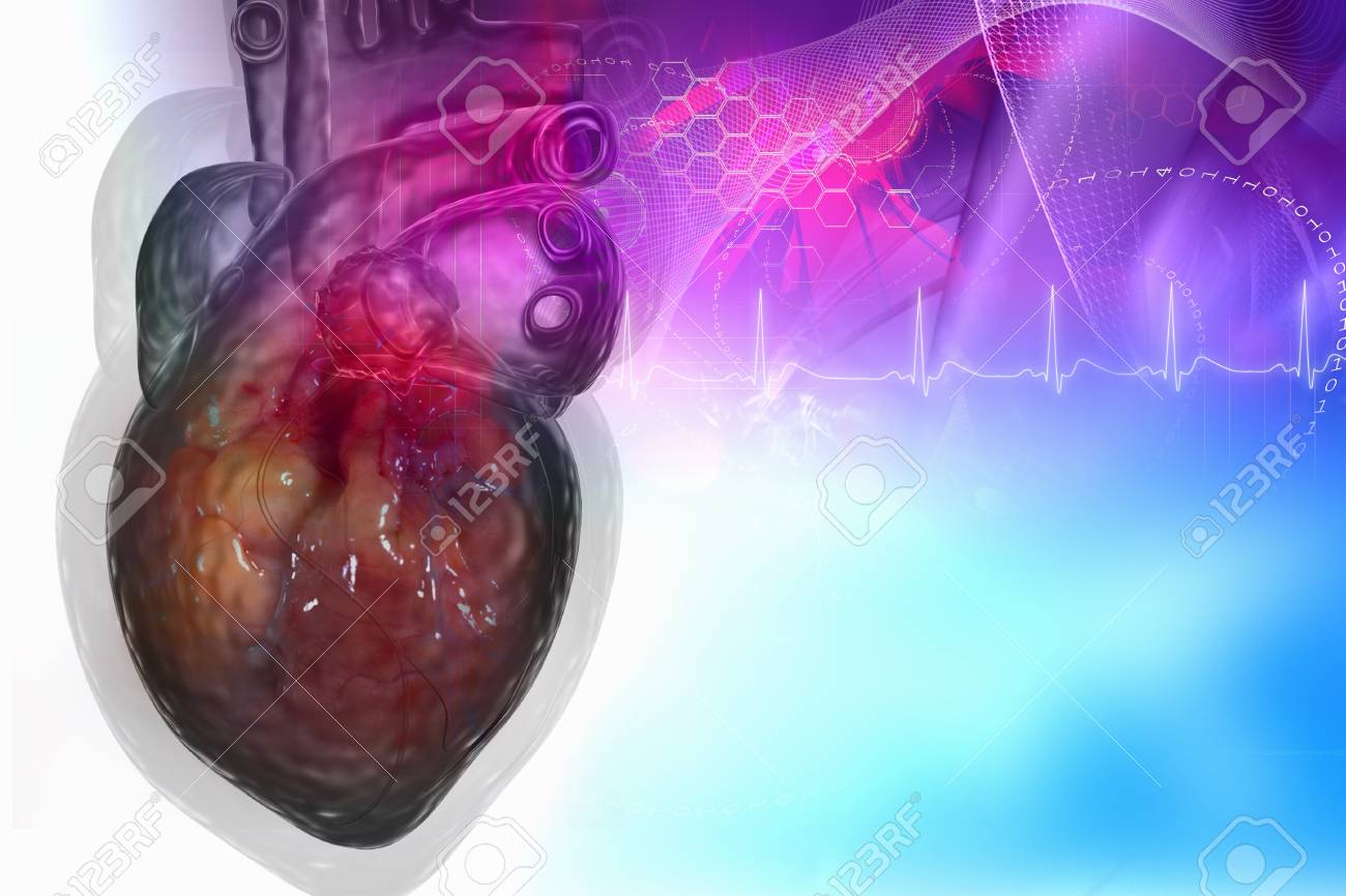 Human heart in digital design Stock Photo - 8057707