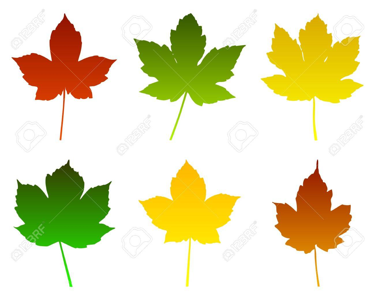Maple leaves Stock Vector - 9941186