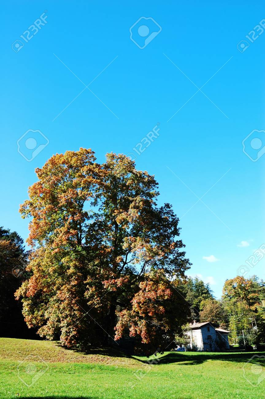 Country landscape during fall season Stock Photo - 2073128