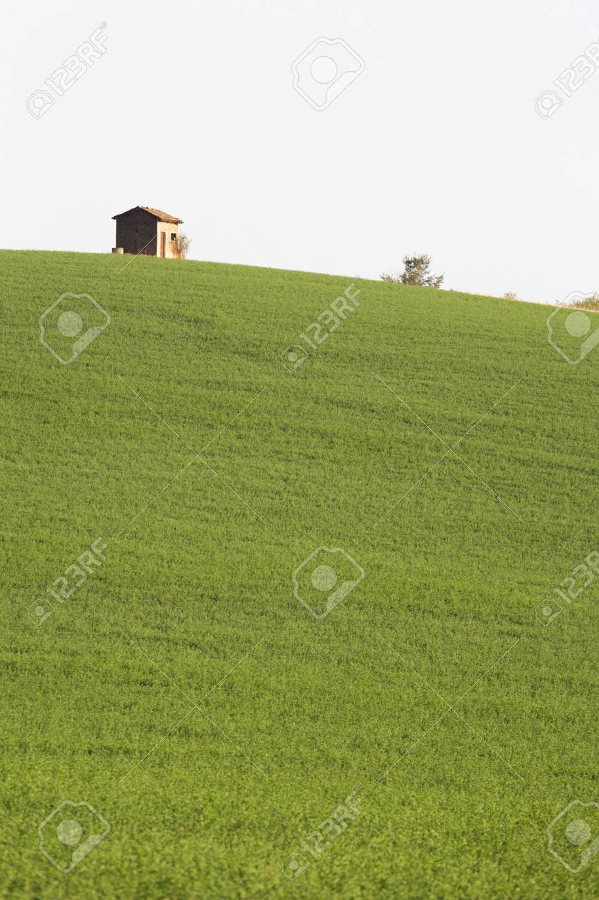 Rural construction at the top of a green hill, Piedmont, Italy Stock Photo - 3638690