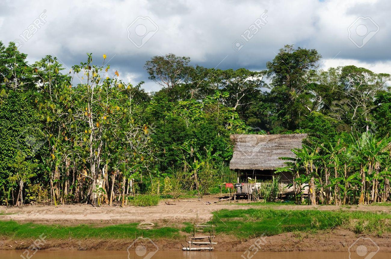 Perú, Perú Amazonas La foto del paisaje actual casa típica tribus indígenas en la Amazonía Foto de archivo - 14487698