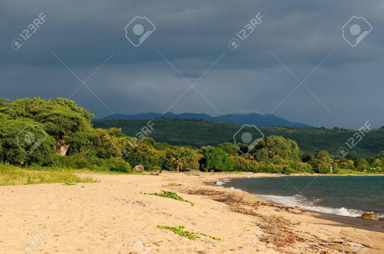 タンザニア、マラウイ湖 (ニアサ...