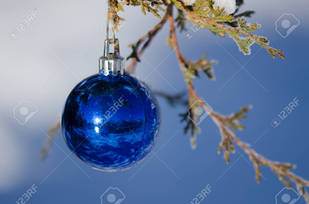 Frozen Christmas Decorations.Frozen Blue Christmas Ornament Decorating A Snowy Outdoor Tree