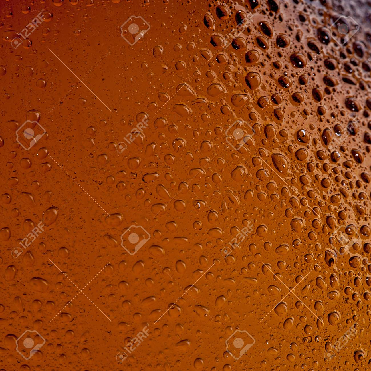 Beer bottle with Drops Stock Photo - 12085105