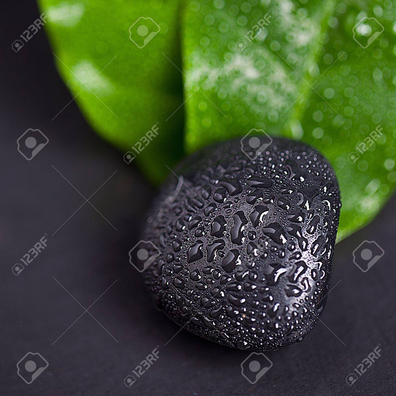 Green leaf and Black Stone with water drops Stock Photo - 12508242