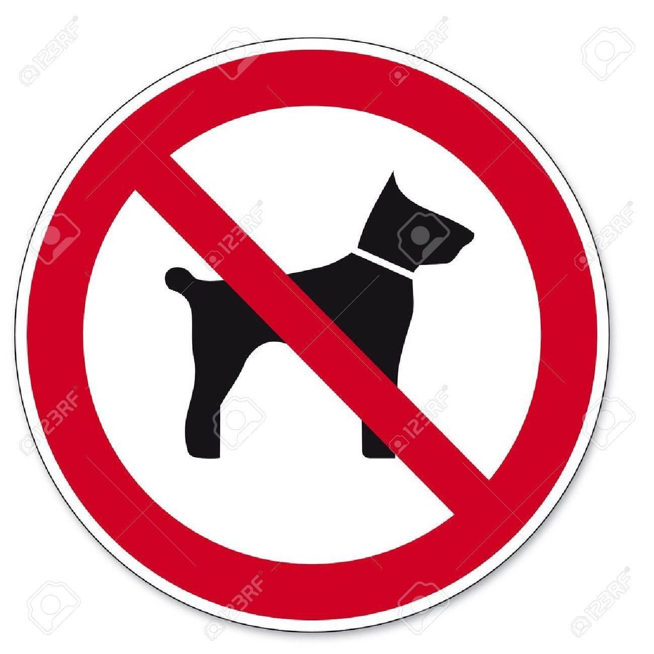 Prohibition signs BGV icon pictogram Carrying animals dog cat - 14460980