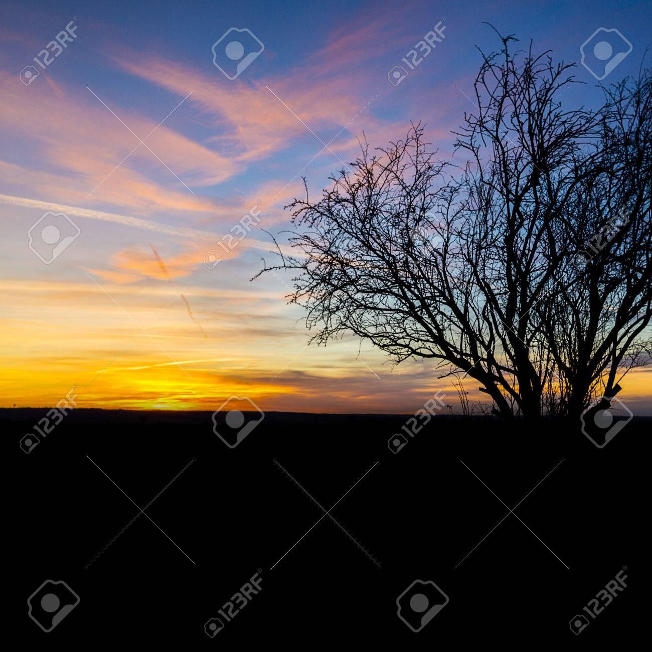 POEMAS SIDERALES ( Sol, Luna, Estrellas, Tierra, Naturaleza, Galaxias...) - Página 19 27079388-La-luz-del-sol-caliente-del-sol-silueta-vieja-naturaleza-puesta-de-sol-de-invierno-naranjo-hora-azul-Foto-de-archivo