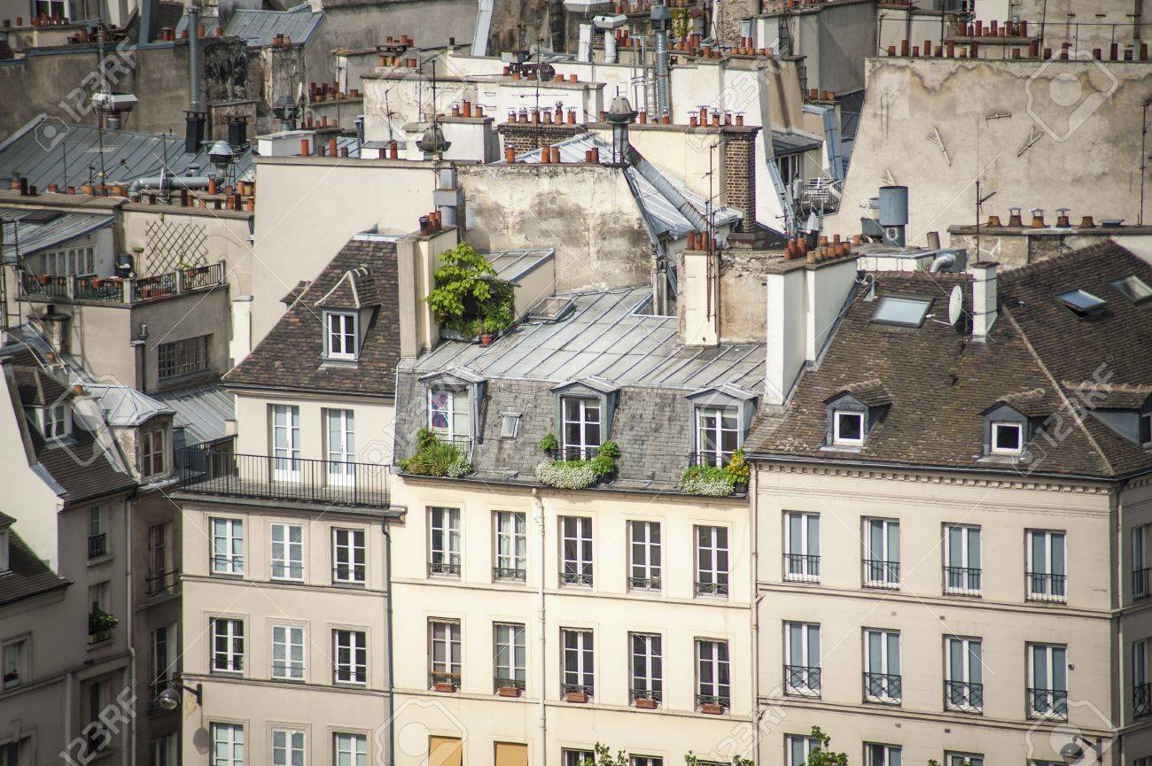 Paris rooftops seen from tower of Notre Dame Stock Photo - 18240487