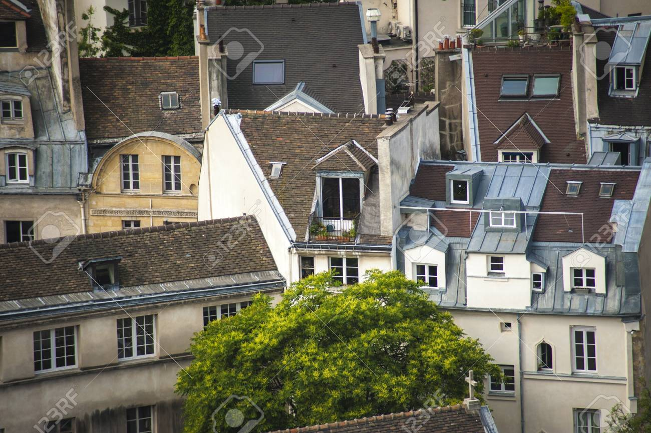 Paris rooftops seen from tower of Notre Dame Stock Photo - 18240517