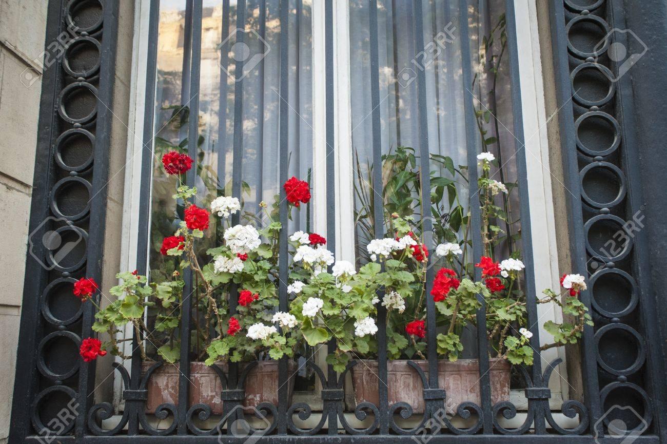 Boîte à Fleurs Et Fenêtre à Barreaux à Paris France Banque Dimages