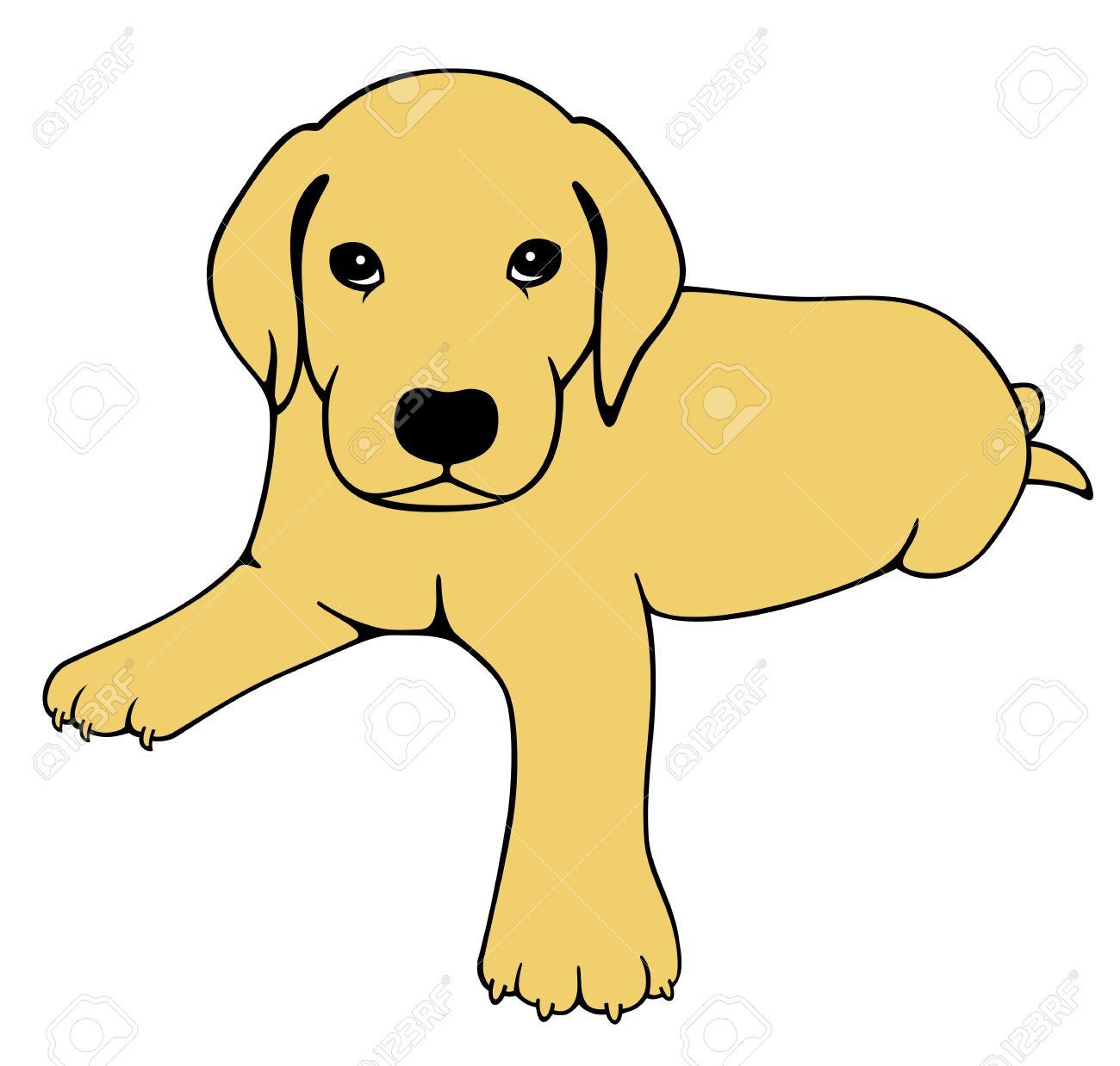 Labrador Puppy Royalty Free Cliparts Vectors And Stock
