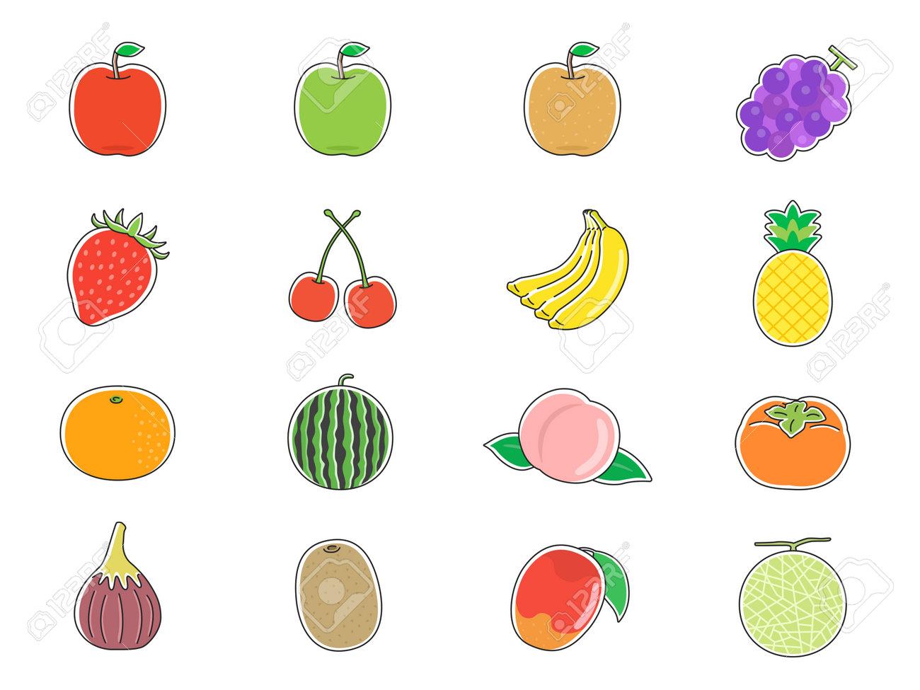 Fruit Illustration Set - 167564497