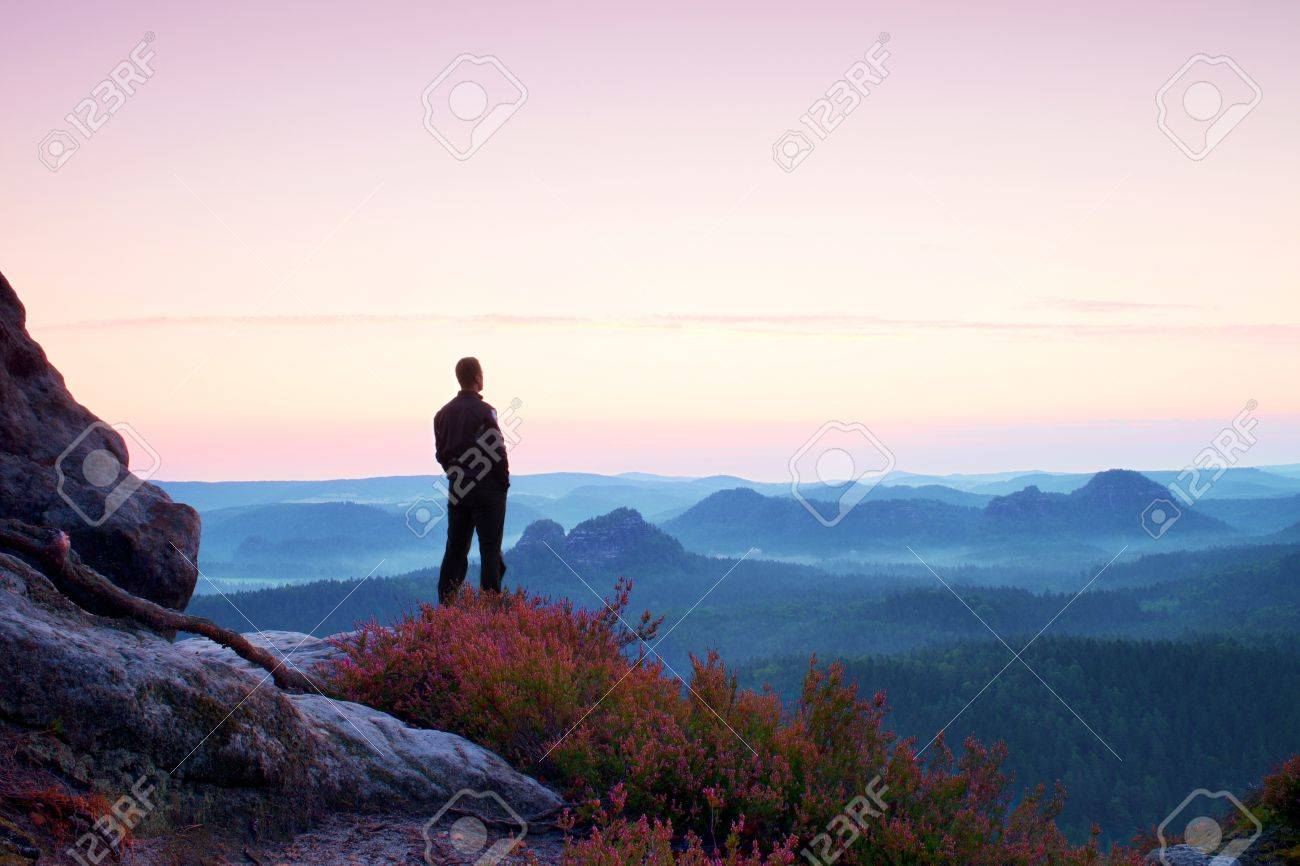 Tall man in black on the cliff with heather bush. Sharp rocky mountains park and view point above valley. - 47930401