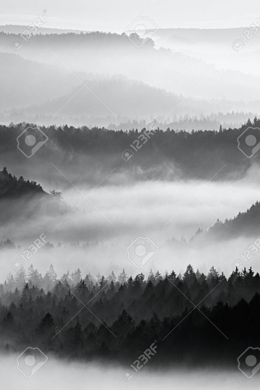 Sharp treetops. Autumn sunrise in a beautiful mountain within inversion. Peaks of hills increased from foggy background. - 49062591