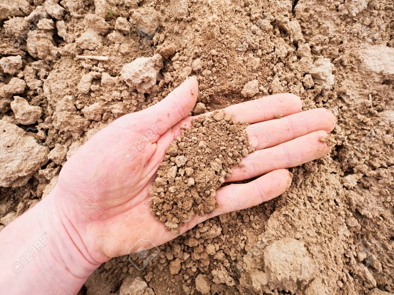 Pink skin hand looking for something in brown wet clay in the