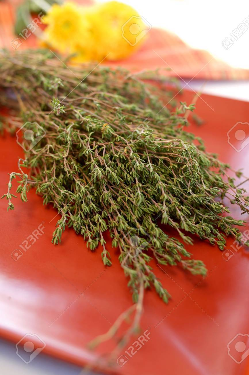 Dry Thyme Stock Photo - 2309480